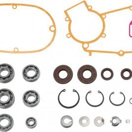 Simson Motor Regenerierung...